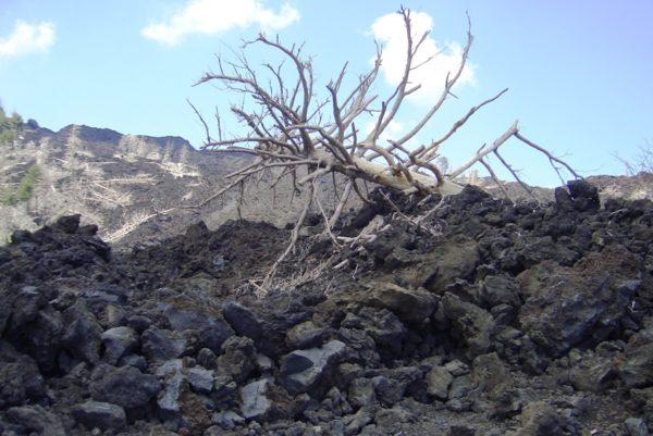Krater Vulkan Ausflug Wandern