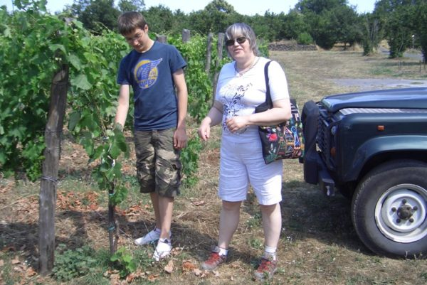 Vino Etna Ätna Catania Urlaub