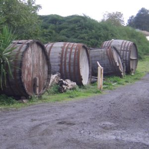 Vino dell'Etna Ätna Wein Sizilien Ausflug