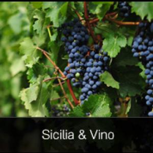 Sicilia& Vino