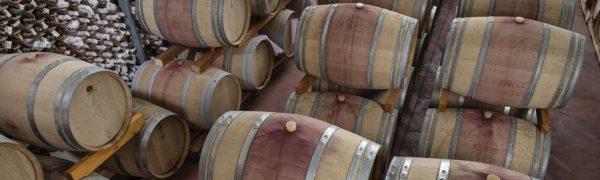 Visite Etna et dégustation vins